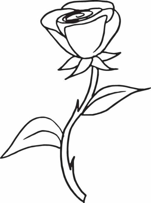 A Sprig Of Rose Coloring Pages For Girls 1