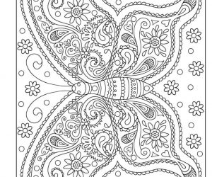 Adult coloring pages butterfly art