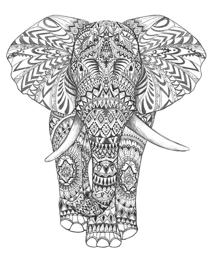 Adult Coloring Pages For Print Out