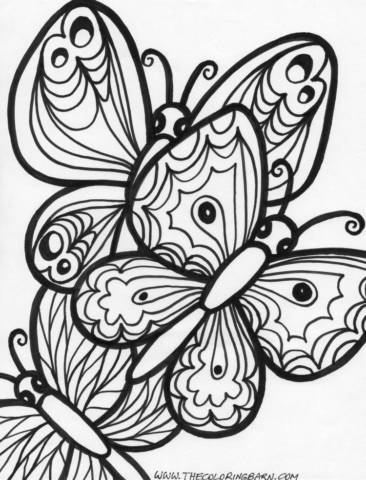 Adult Coloring Pages Printable Butterfly For Girls
