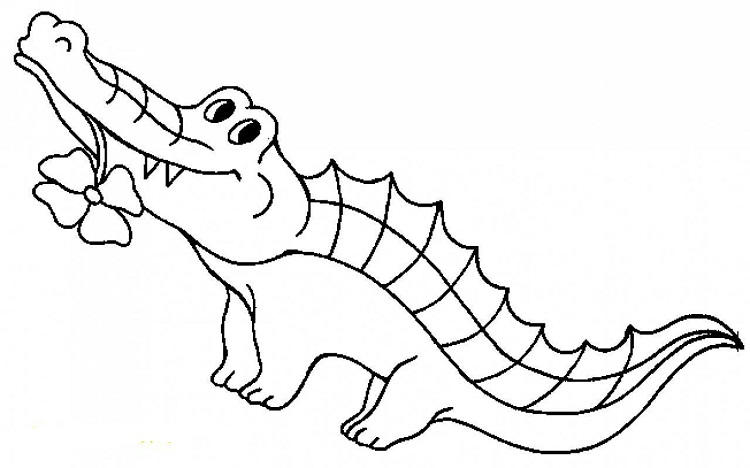 Alligatr Gar Coloring Pages