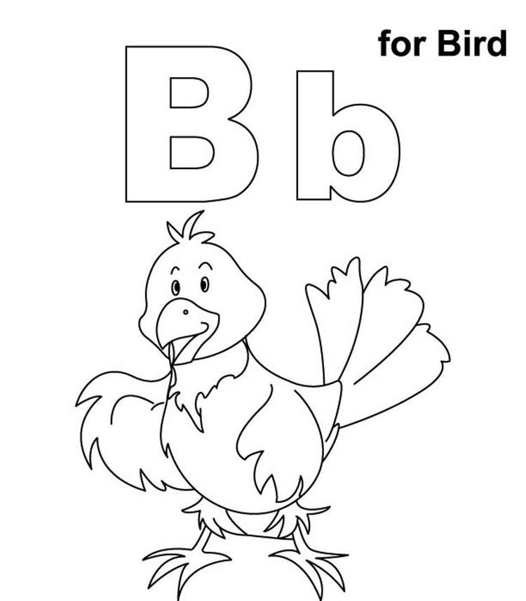Alphabet Coloring Pages B For Bird