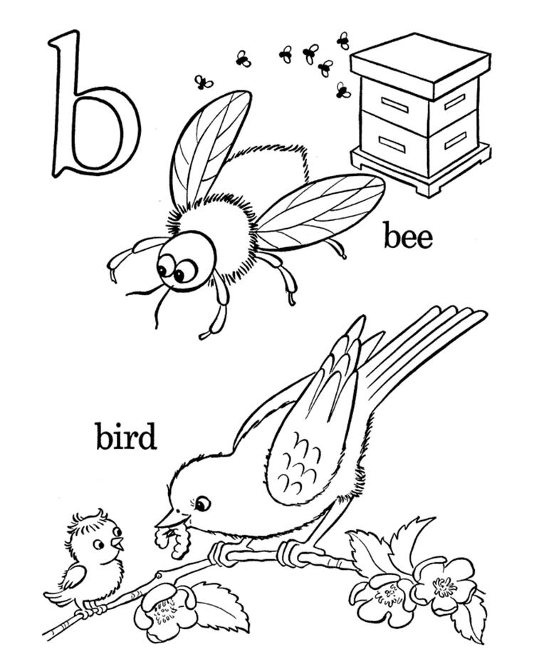 Alphabet Coloring Pages Bee And Bird