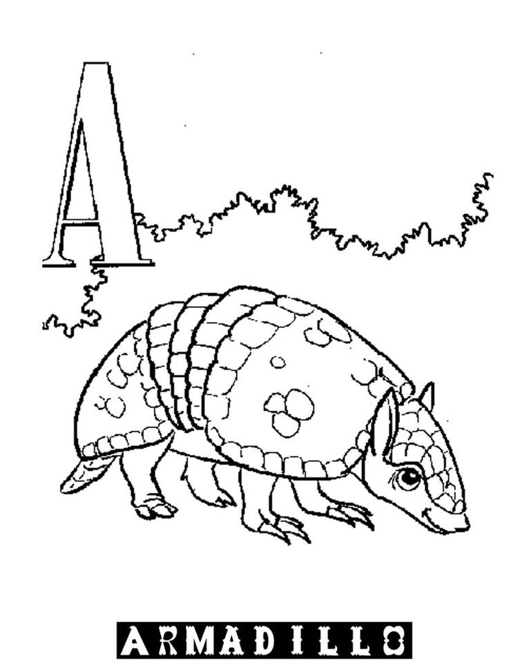 Alphabet Coloring Pages Printable A For Armadillo