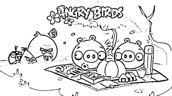 Animal Coloring Angry Birds Picnic Pigs Coloring Pages Angry Birds Picnic Pigs Coloring Pages