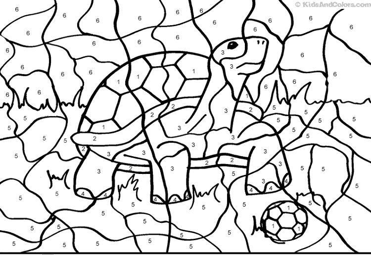Animal Coloring Pages By Number
