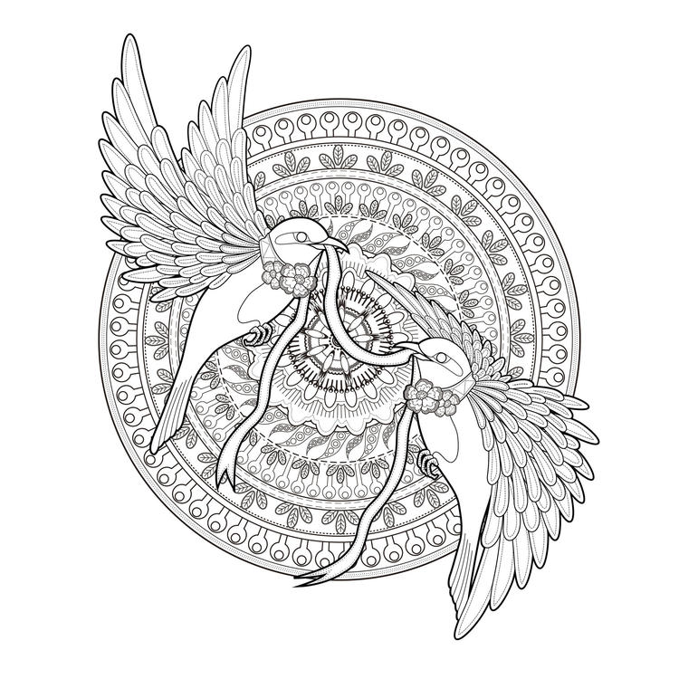 Animal Coloring Pages For Adults Birds Couple