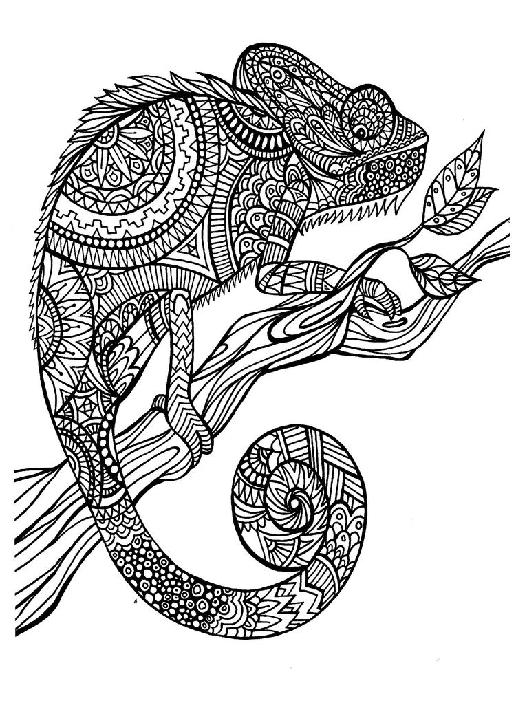 Animal Coloring Pages For Adults Chameleon