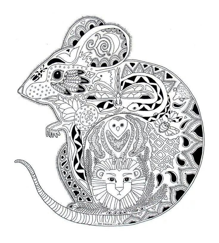 Animal Coloring Pages For Adults Mouse