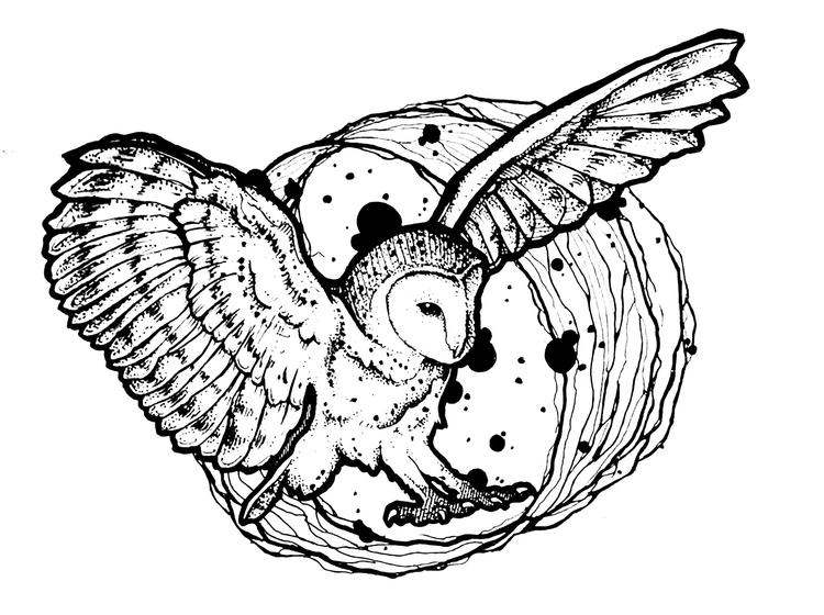 Animal Coloring Pages For Adults Owl Wingspan