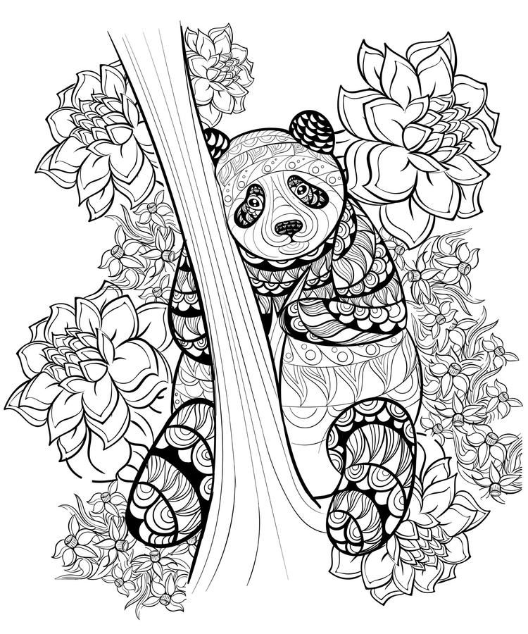 Animal Coloring Pages For Adults Panda