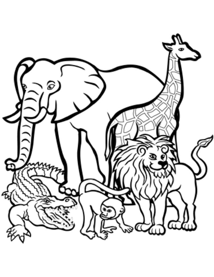 Animal Coloring Pages For Free