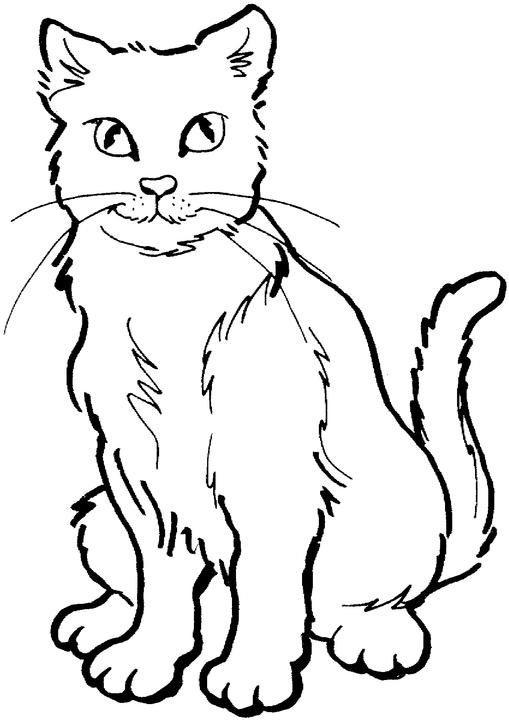 Animal Coloring Pages For Girls Cats