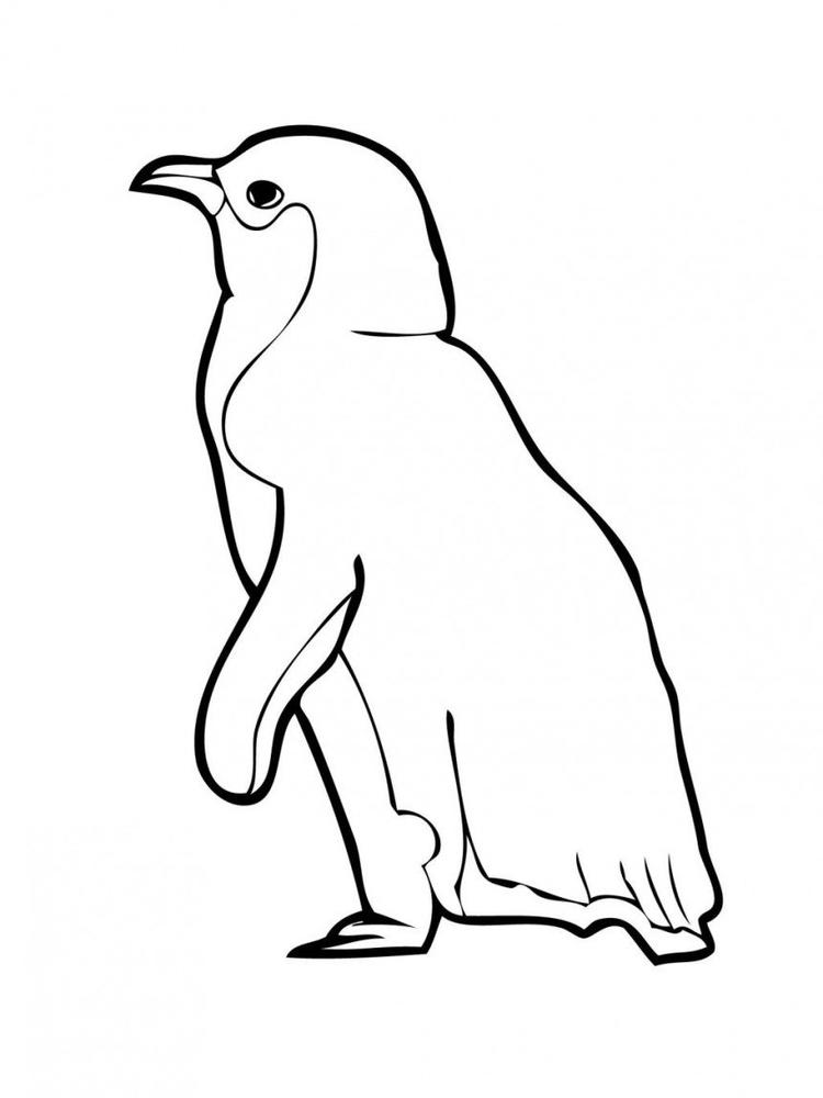 Animal Coloring Pages For Kids Penguin