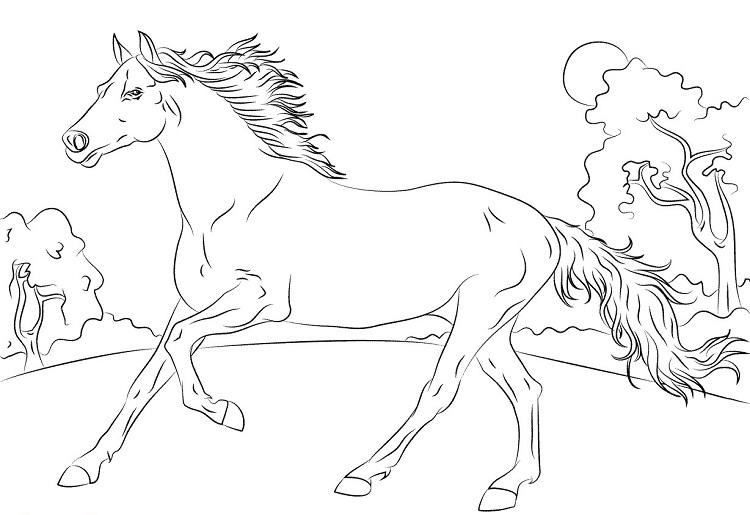 Animal Coloring Pages Horses