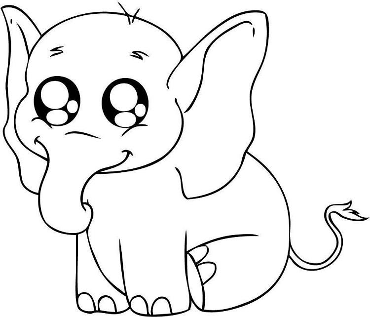 Animal Noses Coloring Pages