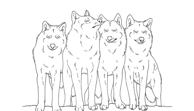 Animal Wolf Coloring Pages Printable