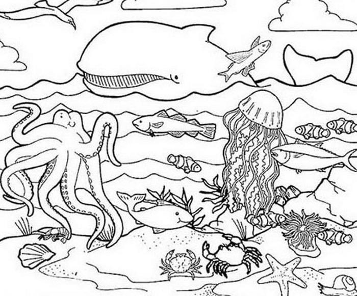 Animals Life Under The Sea Coloring Pages