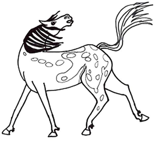 Appalooshorse Coloring Pages For Kids
