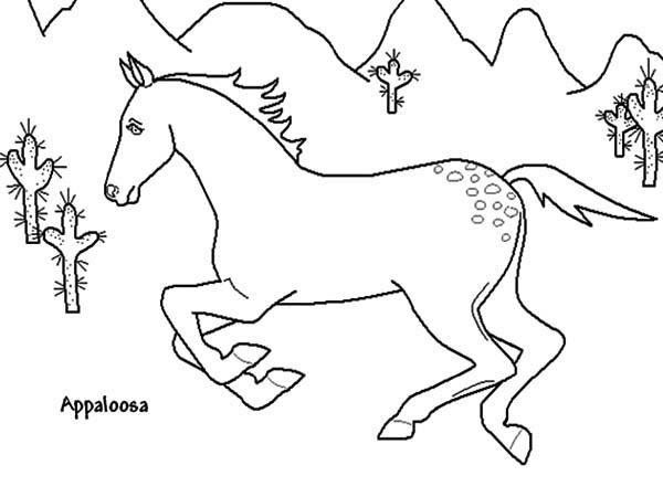 Appalooshorse Running Fast Coloring Pages