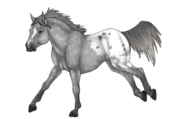 Appalooshorse Strong Feet Coloring Pages