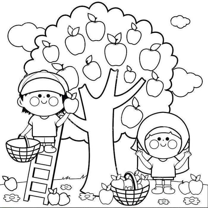 Apple Harvest Festival Coloring Pages