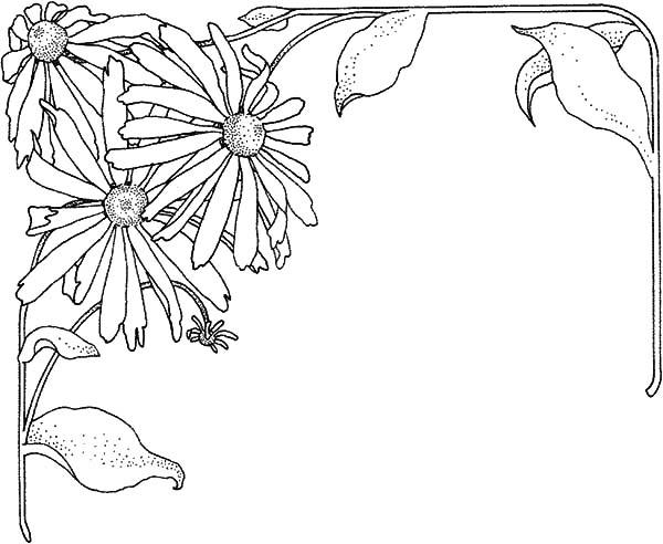 Aster Flower Frame Coloring Pages