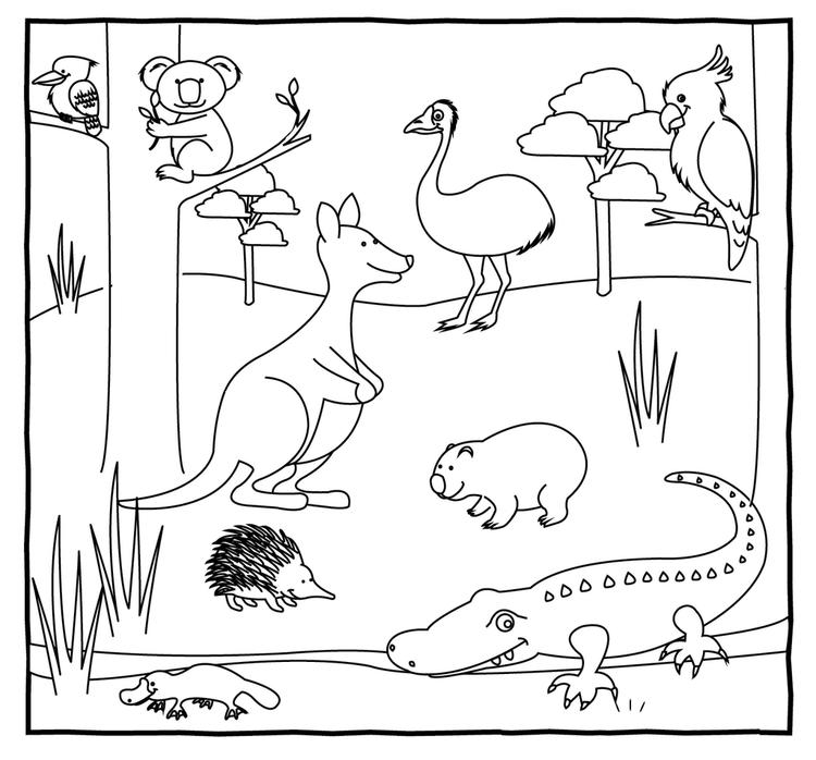 Australian Animals Coloring Page
