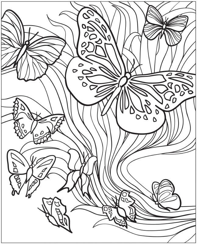 Awesome Adult Coloring Pages Printable Butterfly 1