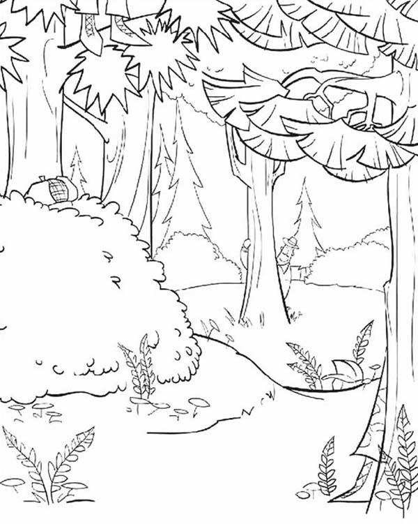 Awesome Open Season Timber National Forest Coloring Pages