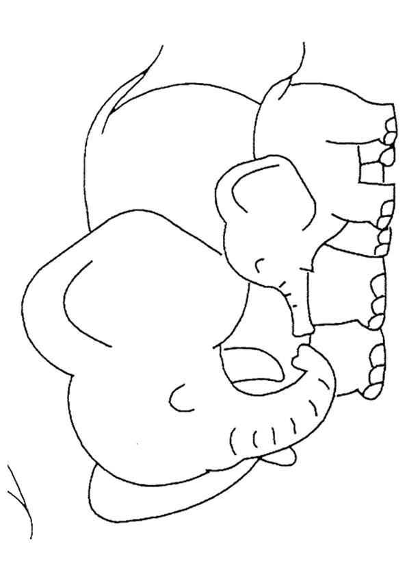 Baby Elephant Coloring Pages With Mom