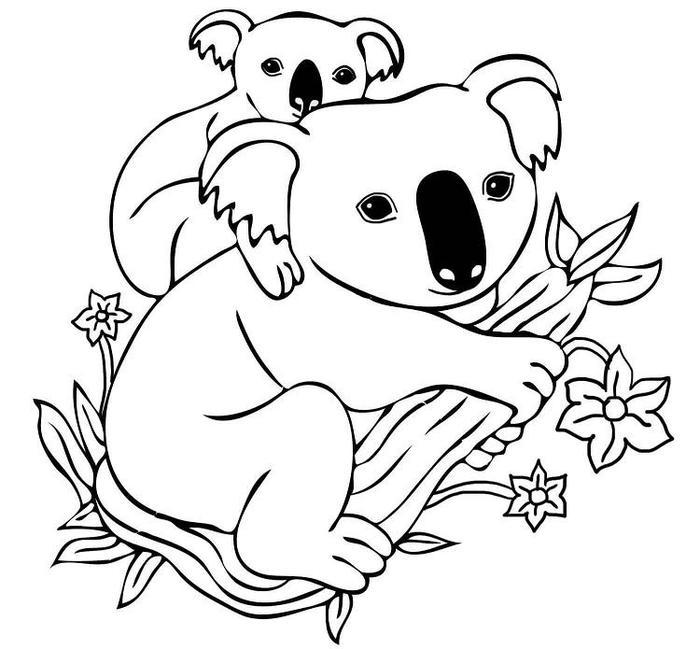 Baby Koala On Mothers Back Coloring Pages