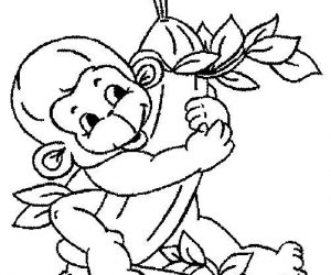 Baby monkey coloring pages loves banana