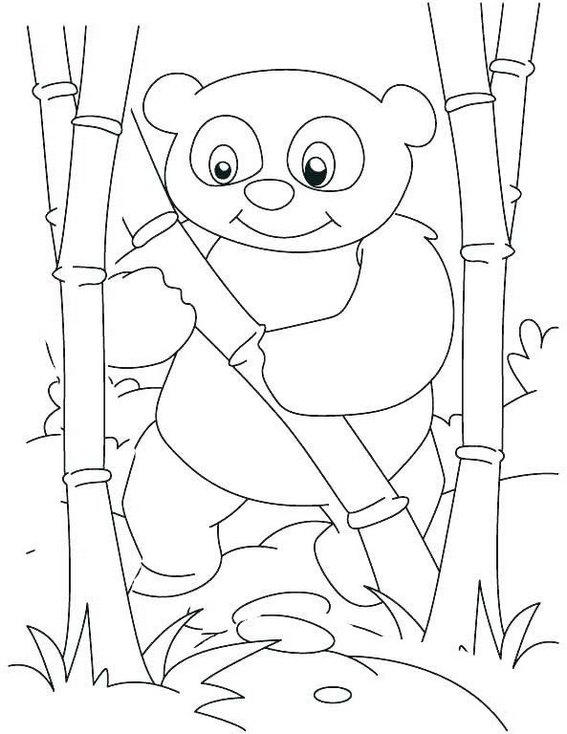 Baby Panda Playing Bamboo Coloring Page