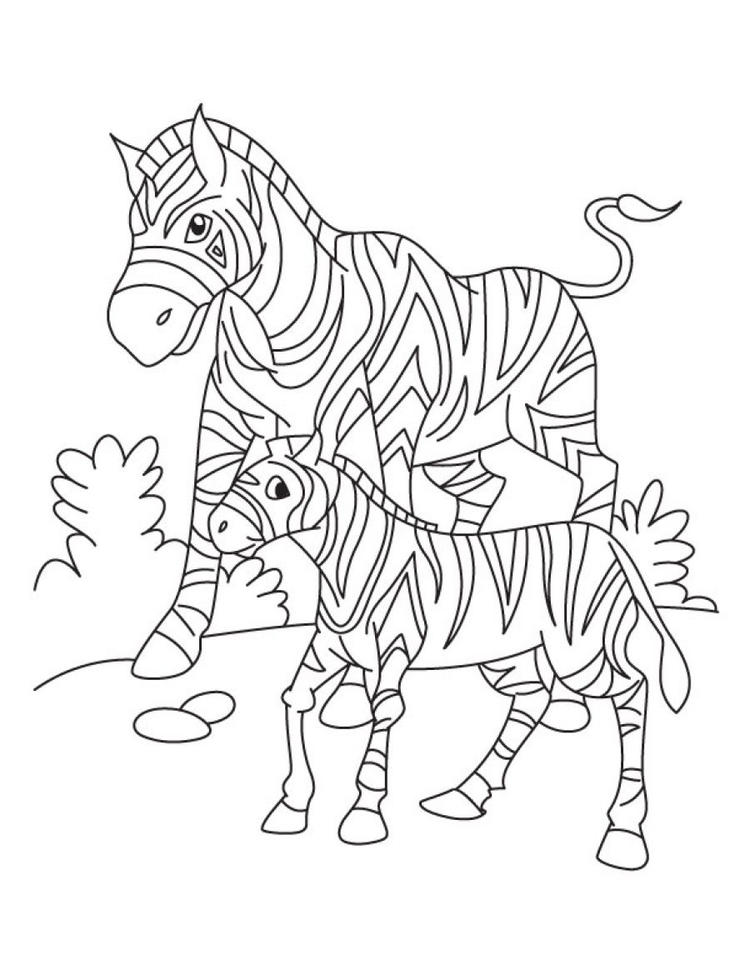 Baby Zebra Coloring Pages With Mom