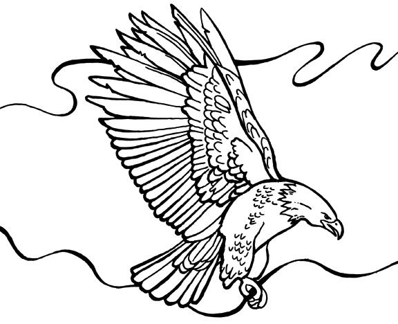 Bald Eagle Coloring Pages Free