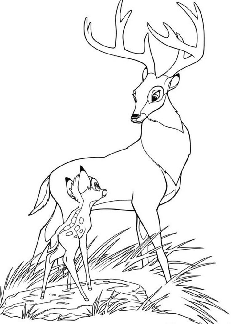 Bambi Coloring Pages And The Great Prince