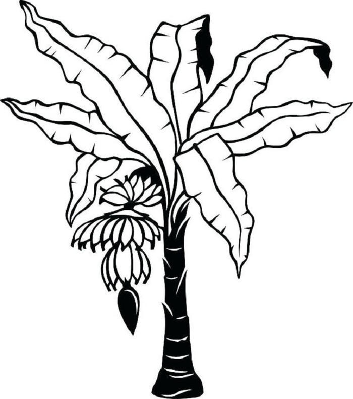 Banana Leaf Coloring Pages