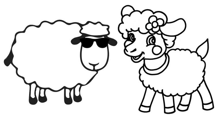 Beautiful Male And Female Sheep Cartoon Coloring Page