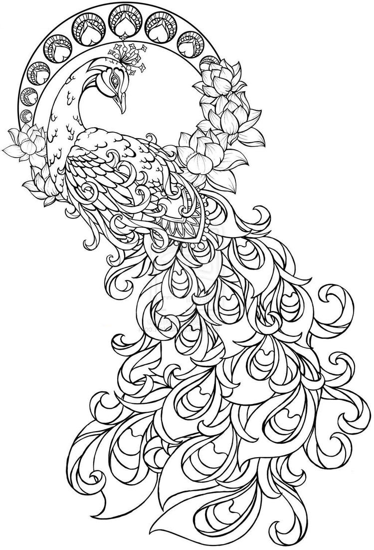 Beautiful Peacock Coloring Pages For Adults