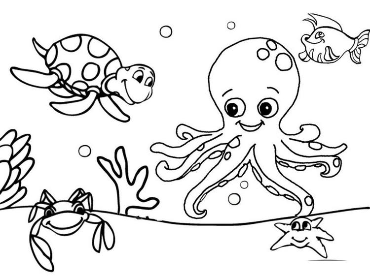 Best And Funny Octopus Sea Turtle And Fish Coloring Page