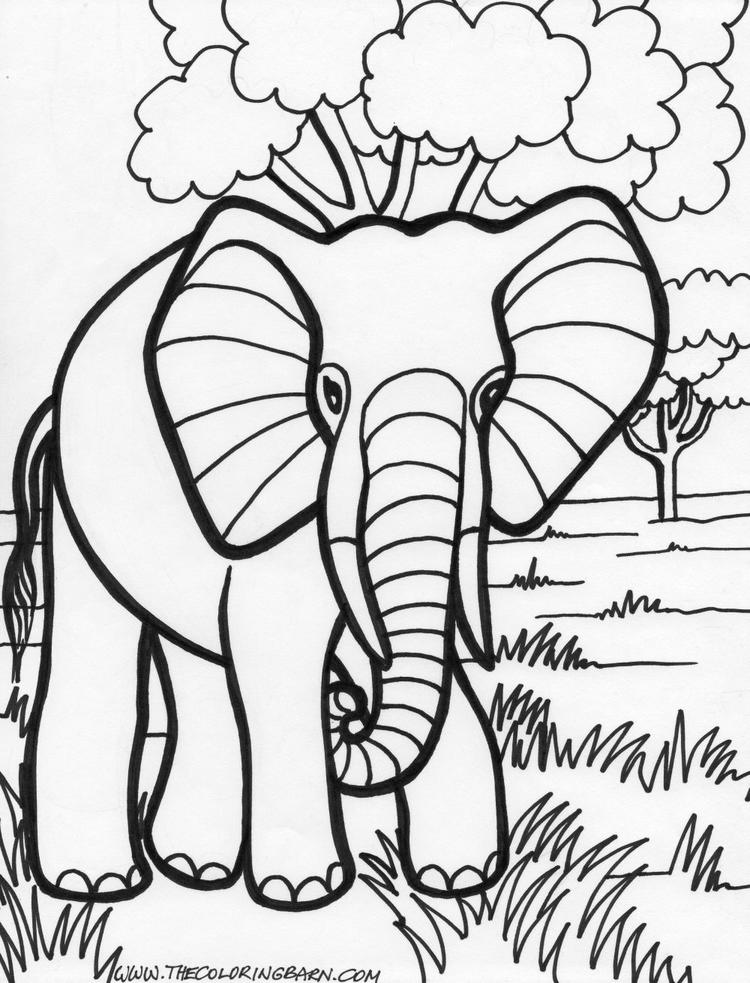 Best Elephant Coloring Pages For Adults