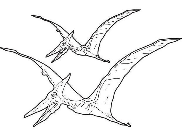 Best Flying Dinosaurs Coloring Pages