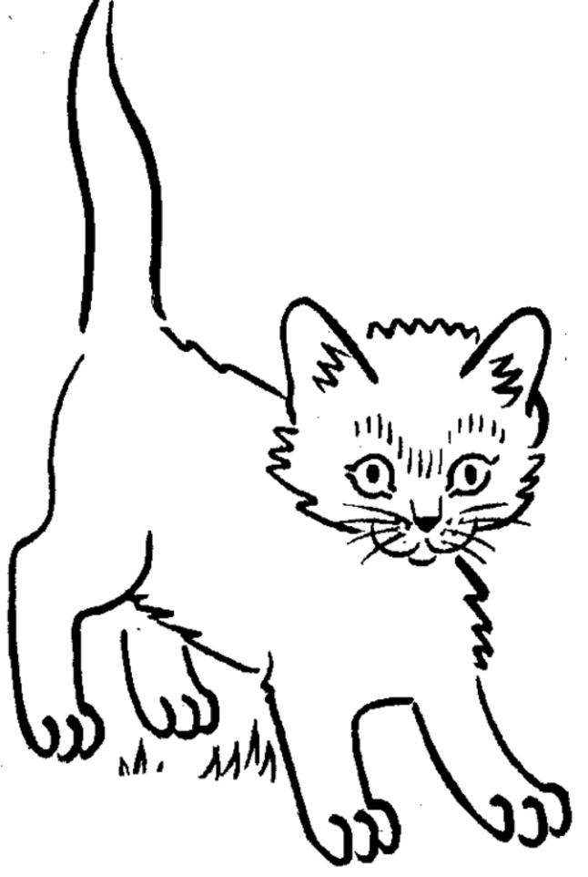 Best Kitty Coloring Pages