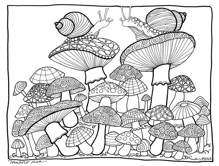 Best Mushroom And Snail Coloring Page For Adults