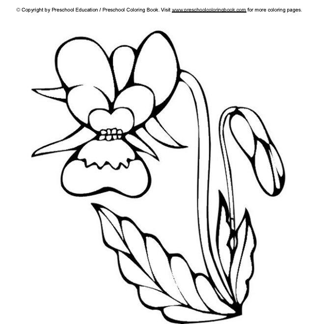 Best Preschool Coloring Pages Spring