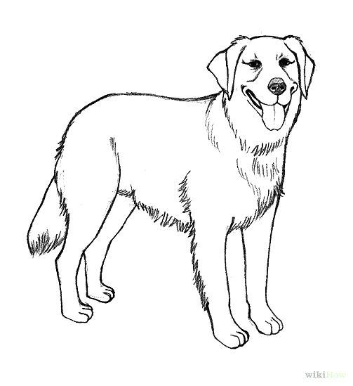 Best Realistic Dog Coloring Pages