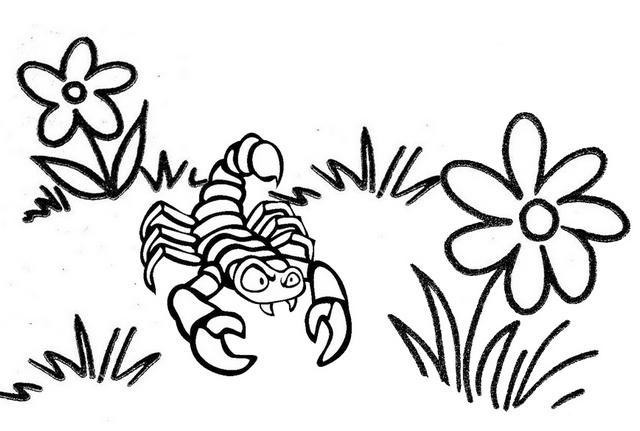 Best Scorpion Coloring Page For Boys