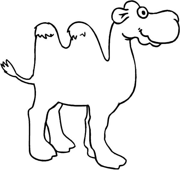 Big Eyed Bactria Camel Coloring Pages