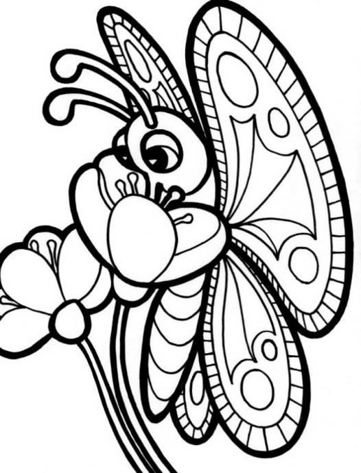 Big Flower And Intricate Butterfly Coloring Pages